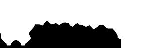 Wordpressdeluxe, nuestro logo