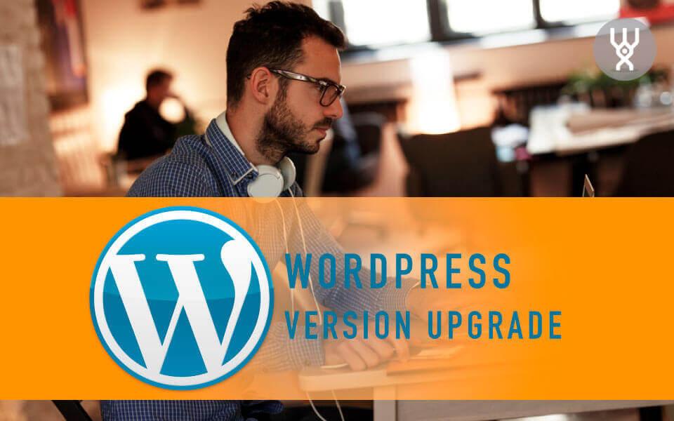 WordPress Deluxe. Oferta comercial. Actualización versión WordPress