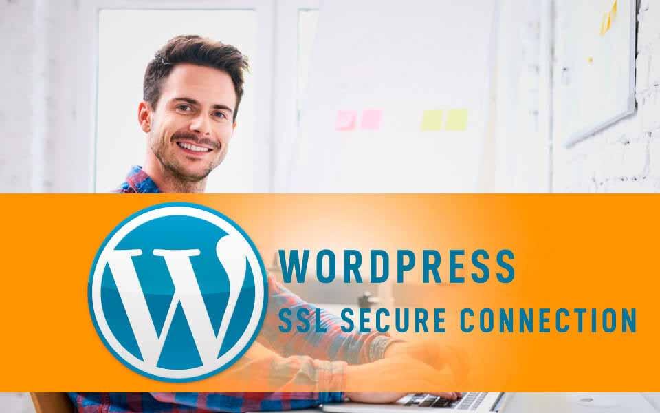 WordPress Deluxe. Servicios frecuentes. Conexión segura 100% SSL. Tráfico Seguro