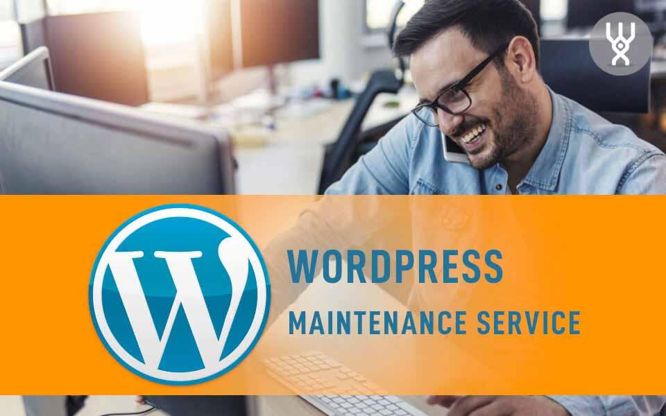 WordPress Deluxe. Servicios frecuentes. Servicio de mantenimiento