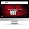 WordPressDeluxe. Diseño web WordPress. Referencias. Chemieuro & Total Petrochemicals. Showcase
